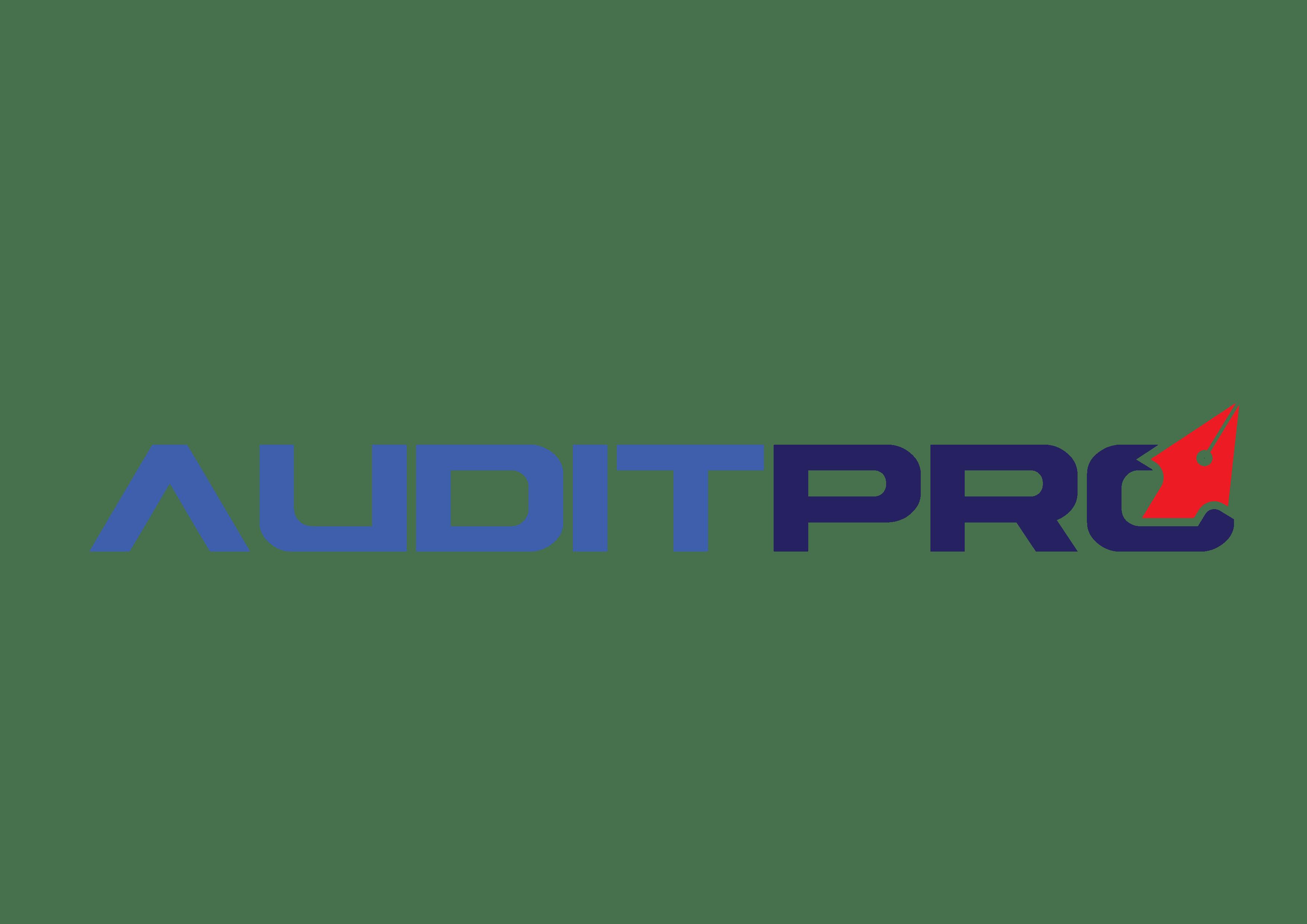 Konsultan Audit - Audit Pro